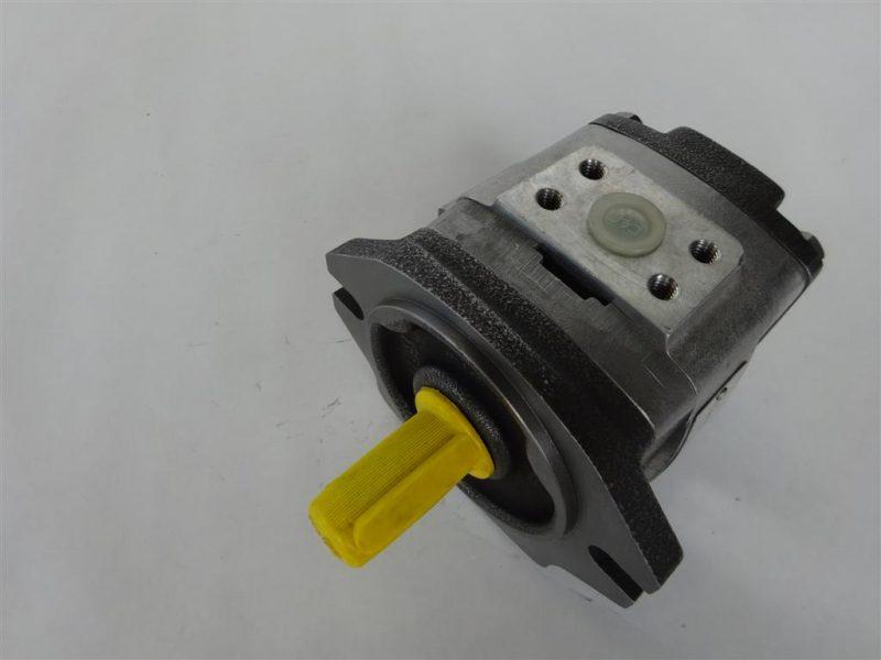 DSC00061 (Large)